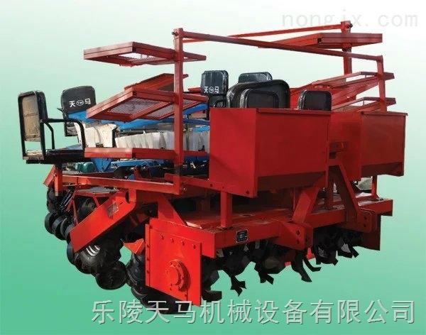 2zq-2-甜葉菊移栽機廠家直銷