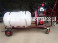 可喷25米元的喷雾器 小型高压打药机 绿化杀虫喷雾机