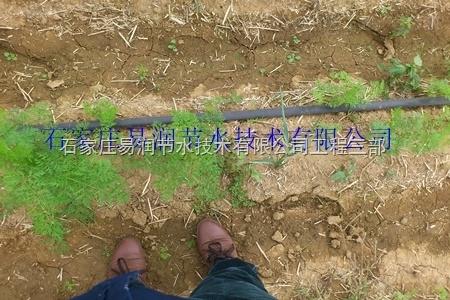 超节水滴灌设备PE滴灌带/固始县厂家出售