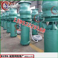 LB(Q)型单级立式轴流式水泵
