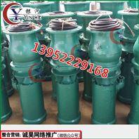 潜水轴流泵-高压式轴流泵-移动潜水轴流泵