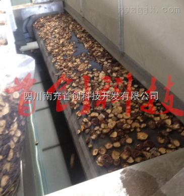 香菇菌菇烘干机