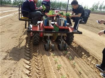移栽机|棉花移栽机|厂家直销价钱便宜|田耐尔