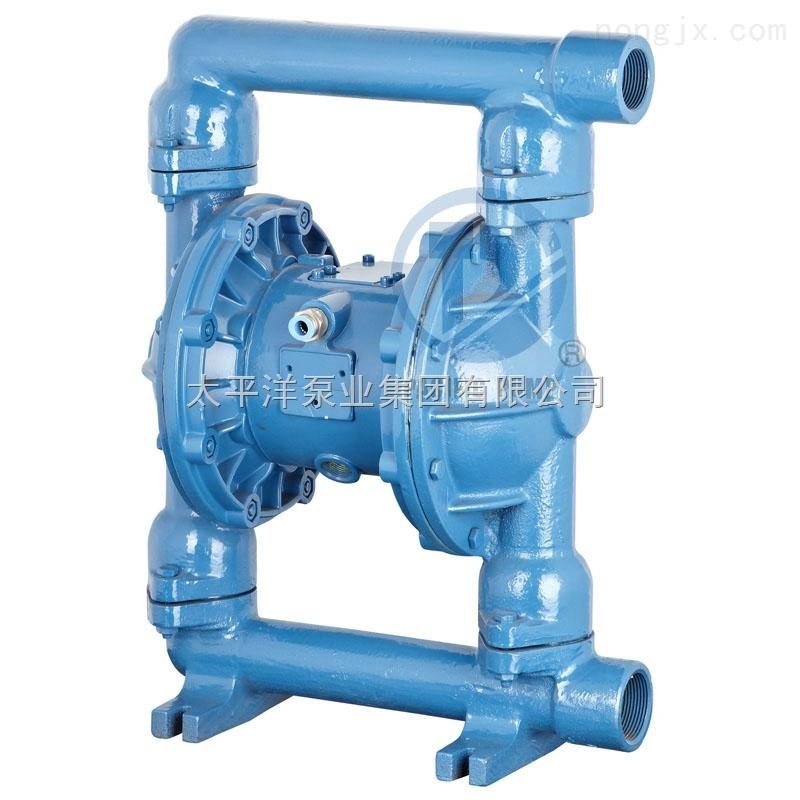 QBY铸铁型气动隔膜泵