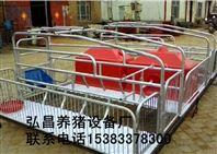 河北泊头市弘昌出售2.2*3.8母猪复合产床生产厂家电话