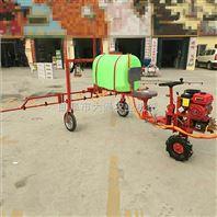 新型手推式喷雾器农用 葡萄杀虫烟雾机