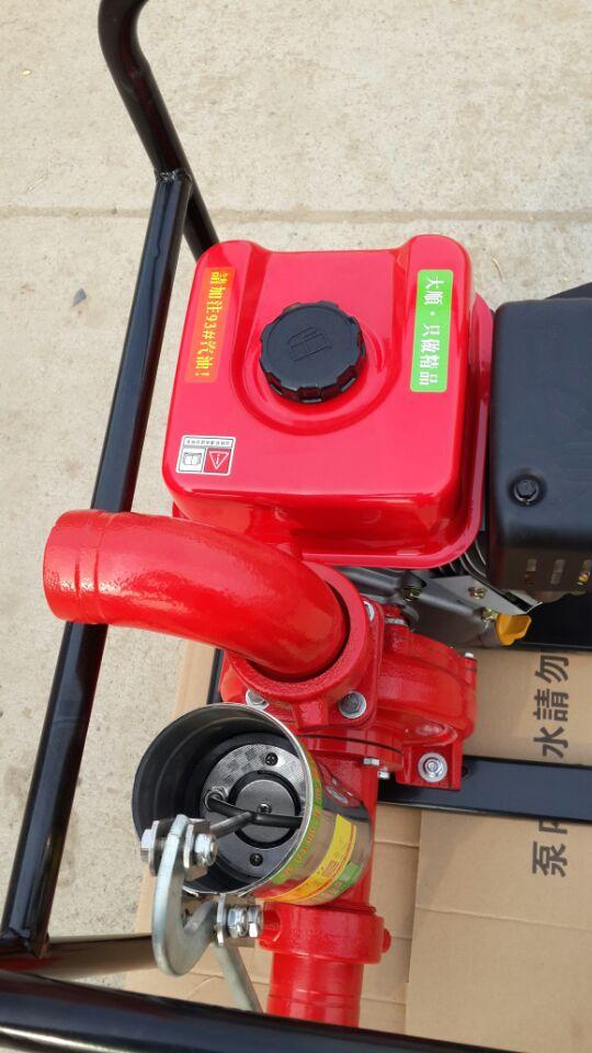 抽水机 小型抽水机 自动抽水机 汽油抽水机 进口抽水机 抽水机价格 台湾大顺强力抽水机 强力抽水,超长扬程,满足各种抽水需要,性能稳定,高效率 产品参数规格: 规格: 长宽高56*42*50cm 转速: 3600r/min 进水口:2.5/3/4寸 出水口:2.5/3/4寸 扬程 :30M 重量:38kg 具有运行稳定,低燥声,低振荡的特点,独特的燃烧室设计; 不但使发动机显得清洁干净,而且也对周围环境没有污染; 发动机不仅设计精良而且它具备的易启动、易操作、节能耐用、低污染等特点也深受用户依赖; 机身加